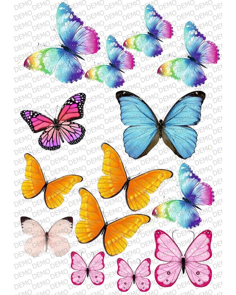 Пеперуди 5-различни размери